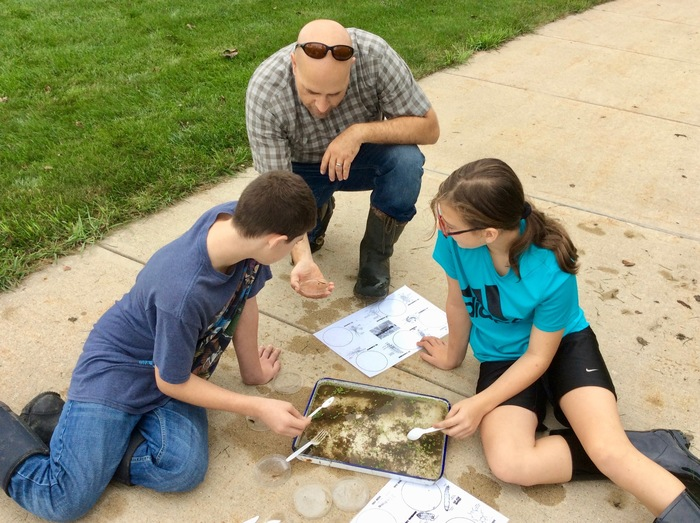 Students work to evaluate water quality using macro-invertebrates.